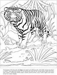 163 best animal quilt images on pinterest coloring books