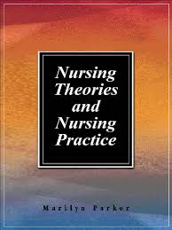 nursing theories u0026 nursing practice 2001 paradigm theory