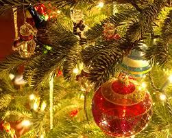 the christmas trees sing new2torah u2013 torah observant followers