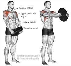 exterior deltoid exercises home design awesome fresh with exterior