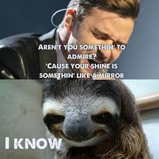 Dragon Sloth Meme - 82 best sloths images on pinterest sloth sloths and funny stuff