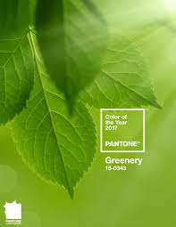What Is The Color Of 2016 Color Of The Year 2017 Greenery