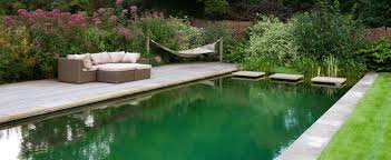Backyard Swimming Ponds - gartenart swimming ponds and natural pools ideas of weinda com