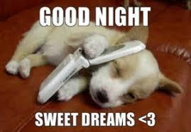Night Meme - good night meme best list of funny goodnight memes