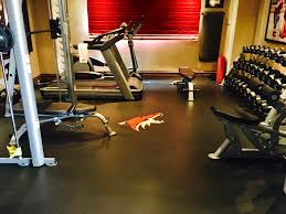 Exercise Floor Mats Over Carpet by Floor Coverings From Summit International Flooring Athletic