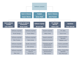 matrix organization structure business structure