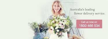 Floral Delivery Delivery Florist Flower Delivery Australia Send Flowers 28