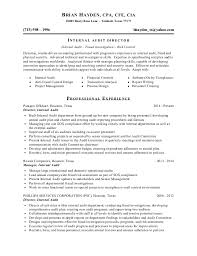 Professional Format Resume Resume Of Brian Hayden 3 2016