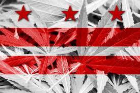 Colorado Flag Marijuana Washington Dc Flag On Cannabis Background Drug Policy