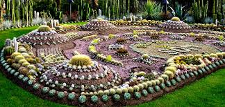Cactus Garden Ideas The Cactus Garden In Sweden Bombay Outdoors