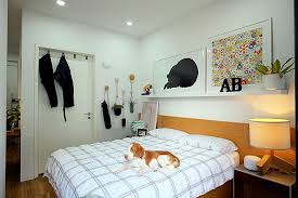5 simple tips for a pet friendly home singapore u0027s child