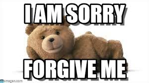 I Am Sorry Meme - for my gf i am sorry on memegen