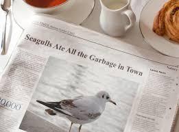 Newspaper Meme Generator - morning news photofunia free photo effects and online photo editor