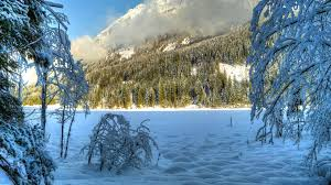 winter nature wallpapers winter nature hd wallpapers 4k