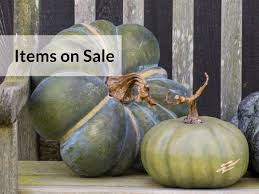 shop p allen smith garden home decor and gifts