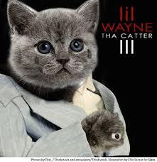 Cat Photo Album 12 Classic Hip Hop Album Covers All Cat Remixed 12 Pictures Clip