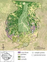 Amazon Maps Land Use Driven Stream Warming In Southeastern Amazonia
