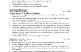 resume it director resume shocking it manager position resume
