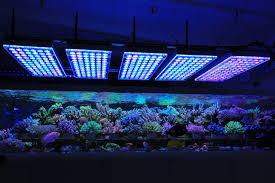 led lights for coral tanks orphek atlantik v4 reef coral aquarium led lighting miejsca do