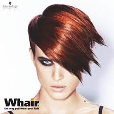 how to mix schwarzkopf hair color 192 best a igora hair color images on pinterest strands colors