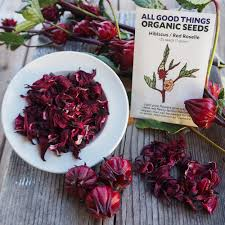 flower food packets hibiscus sabdariffa seeds the plant seed company