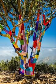 another fantastic yarn bombed tree the work that has into