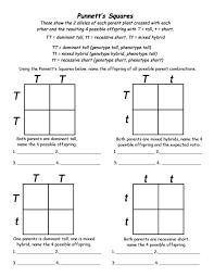 biology genetics worksheet worksheets
