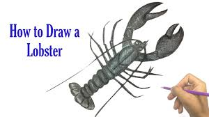 how to draw a lobster drawing animal fast for kids youtube