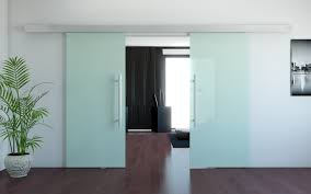 frosted glass door with stainless steel handle for large