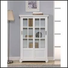 shallow wall cabinets with doors shallow wall cabinet with glass doors cabinet home decorating