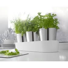 kr utergarten k che kräutergarten küche alaiyff info alaiyff info