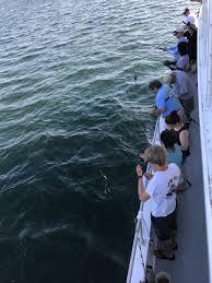 Long Island Soup Kitchens Charter Fishing Boat Donates 1 000 Fish To Port Jeff Soup Kitchen
