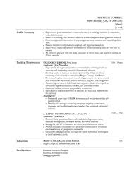 Resume Personal Information Sample by Resume Personal Banker Resume Templates Art Student Cv How To