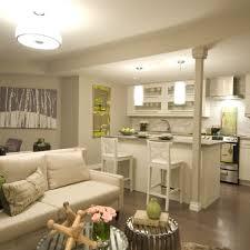 basement apartment ideas photos varyhomedesign com