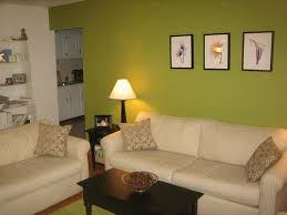 3 mint green feature wall black furniture white couch living