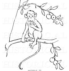 how to draw a monkey on a tree