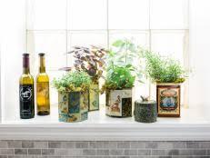 indoor herb gardens how to grow herbs indoors using mason jars hgtv