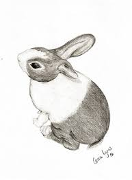 quartz bunny drawing by carriephlyons deviantart com on