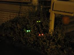 halloween glow sticks spooky eyes in the bushes tutorial for halloween frugal upstate
