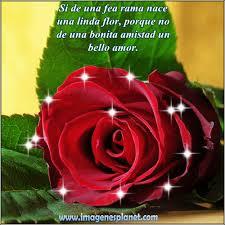 imagenes de amor con rosas animadas imagenes de amor para compartir en facebook imágenes de amor con