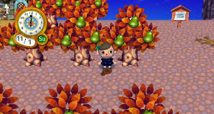 mushrooming season animal crossing wiki fandom powered by wikia