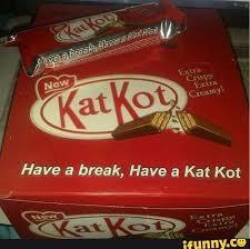 Kat Meme - kat kot bootleg knock off know your meme
