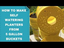 How To Make Self Watering Planters by How To Make 5 Gallon Bucket Planter Self Watering How To Prevent