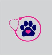 139 best vet clinic images on pinterest veterinary medicine