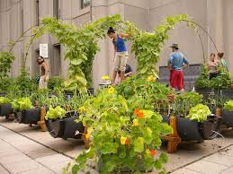 Ideas For Terrace Garden Ideas For Terrace Garden Ideas For Terrace Garden Outdoor