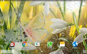 spring live wallpaper android apps on google play