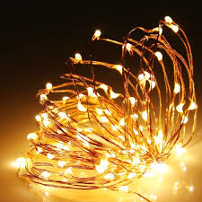 Light String Led by 100 Warm White Led Copper Wire Micro Fairy Lights String Led