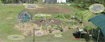 permaculture garden layout mandala layout guide dmk permaculture
