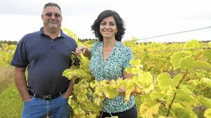 Dana Wolley Weathered Vineyards Opens In Weisenberg Township Lehigh Valley
