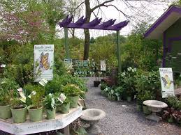 delaware native plants garden center cooperative extension